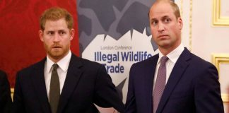 Książę Harry, Książę William Źródło: PAP